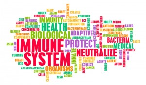 immune system words