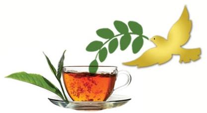 Moringa Tea Cup