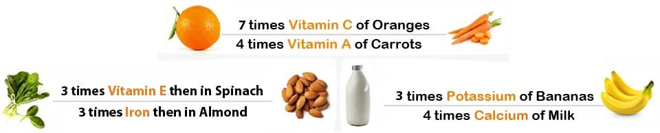 Moringa vitamin_compare